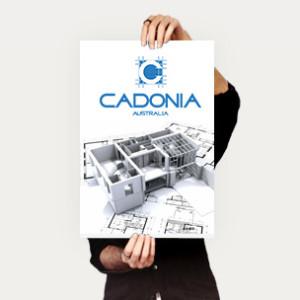 cadonia